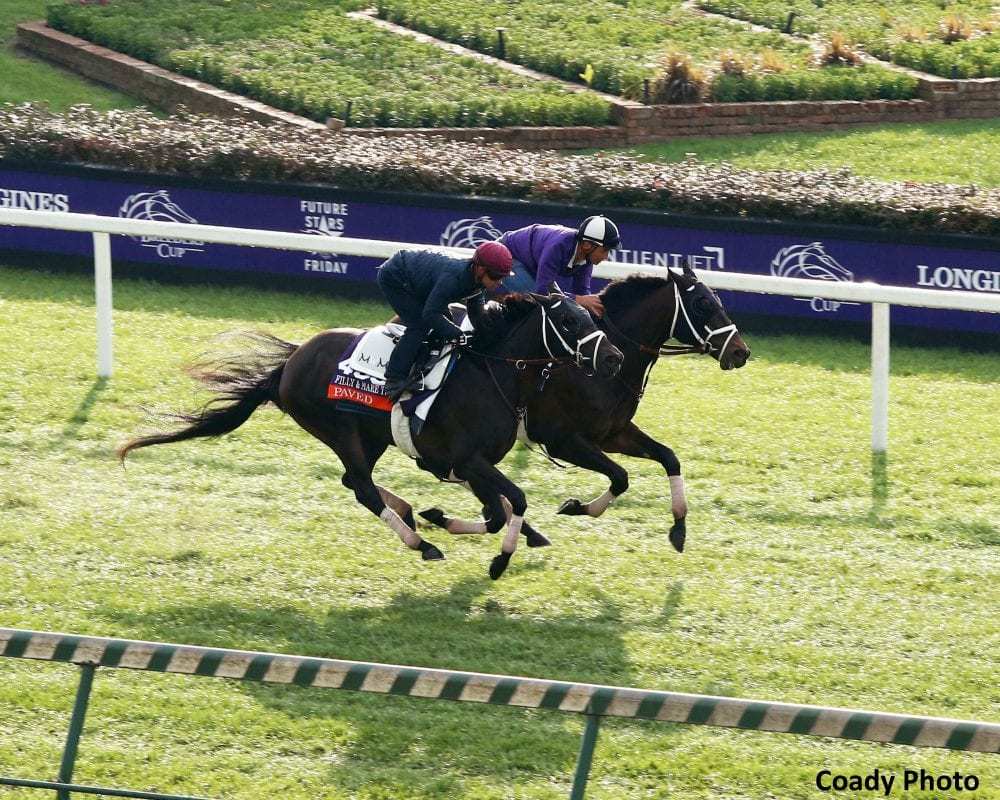 Breeders Cup Grass Stars Worried About Turf Course