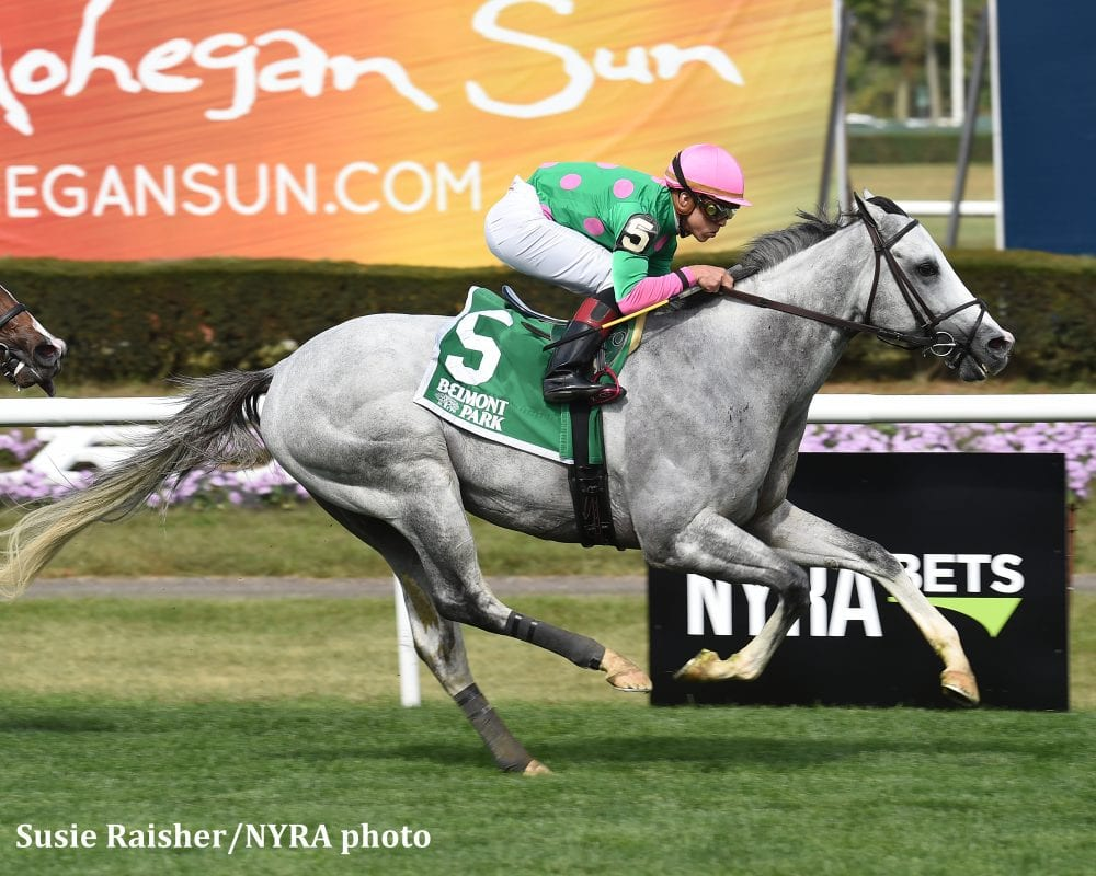 Clement Holds Pair Of Aces In Belmont Turf Sprint