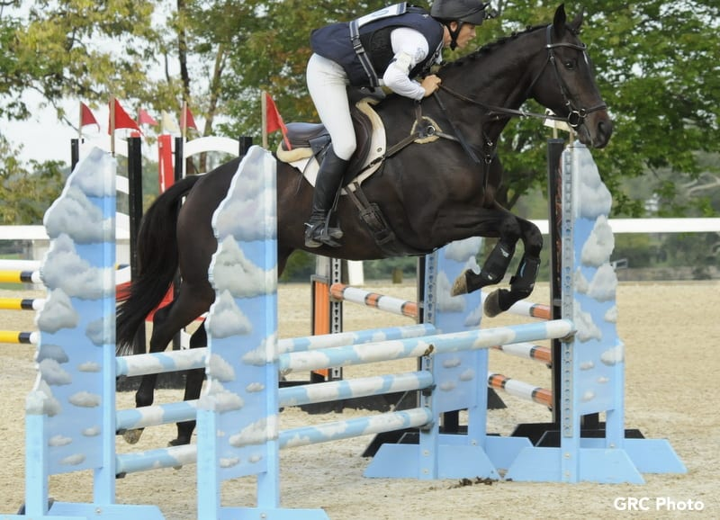 Cosequin Presents Aftercare Spotlight: Thoroughbred Makeover Bridges