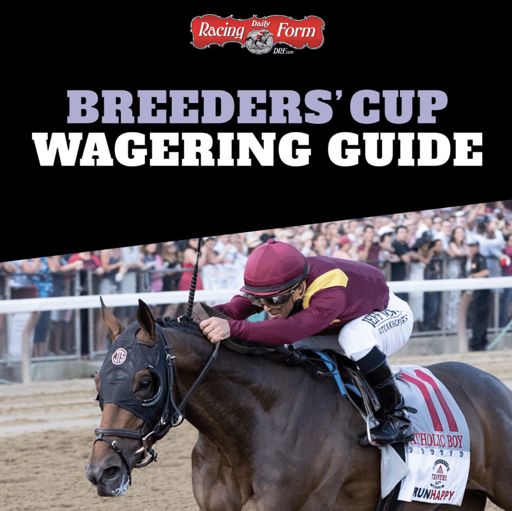 Free DRF Breeders' Cup Wagering Guide Available Now - Horse Racing