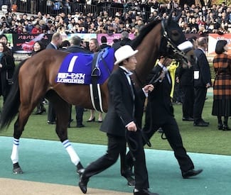 Filly Superstar Almond Eye Takes Japan Cup In Record Time  - Horse Racing News | Paulick Report