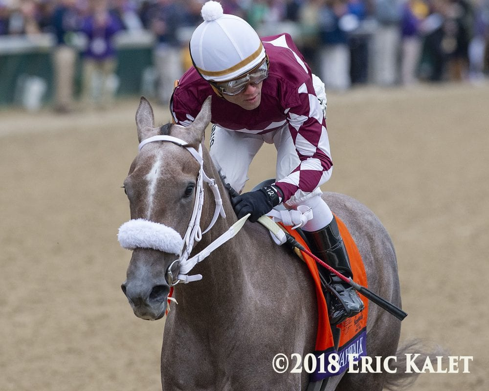 Juvenile Filly Champ Jaywalk Will Take Florida Route To