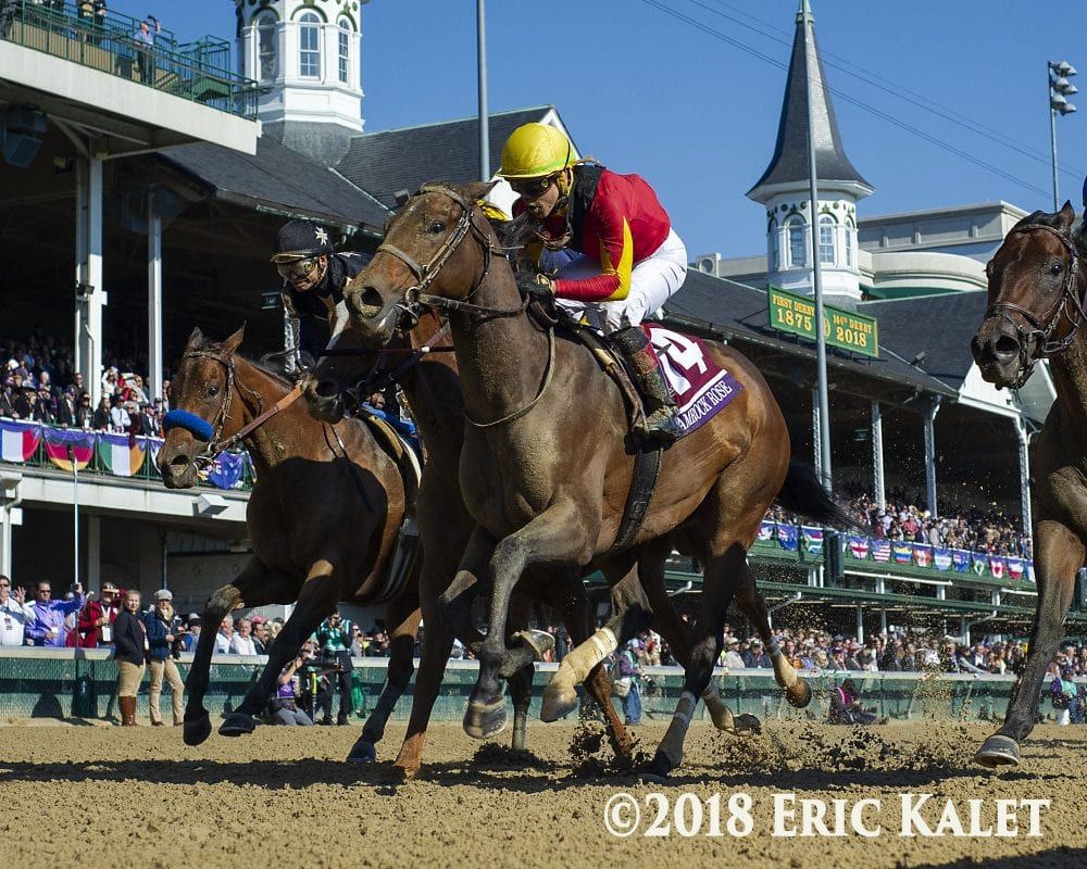 Shamrock Rose Surprises At 25 1 In Breeders Cup Filly