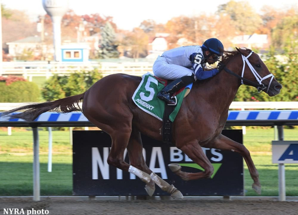 Vekoma Takes Nashua For Weaver Remsen Could Be Next