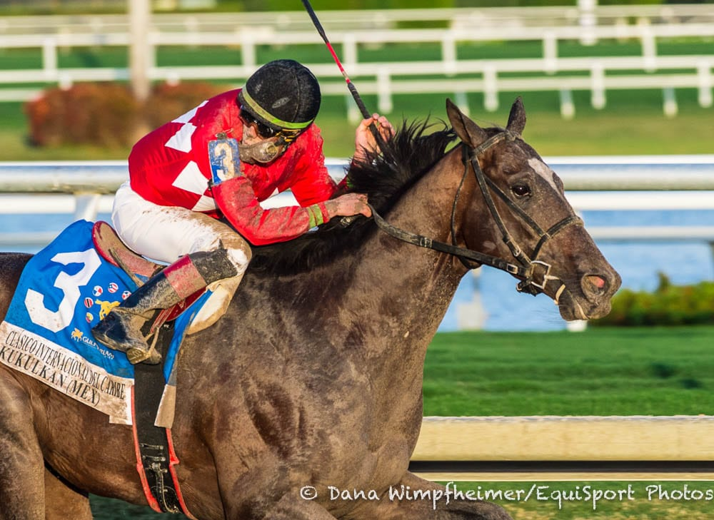 Bloodlines Presented By Editorial, A Climax Stallion: Pride Of Mexico Comes To Pegasus