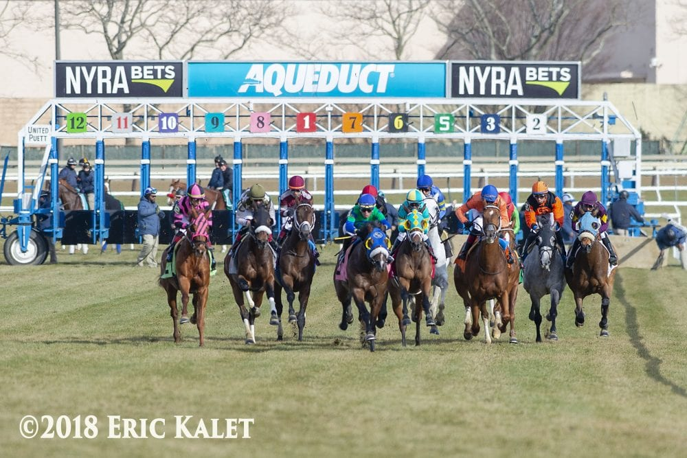 NYRA Releases 2019 Race Dates For Aqueduct Racetrack - Horse
