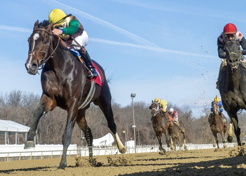 Alwaysmining Doubles Up In Laurel S Heft Stakes Horse