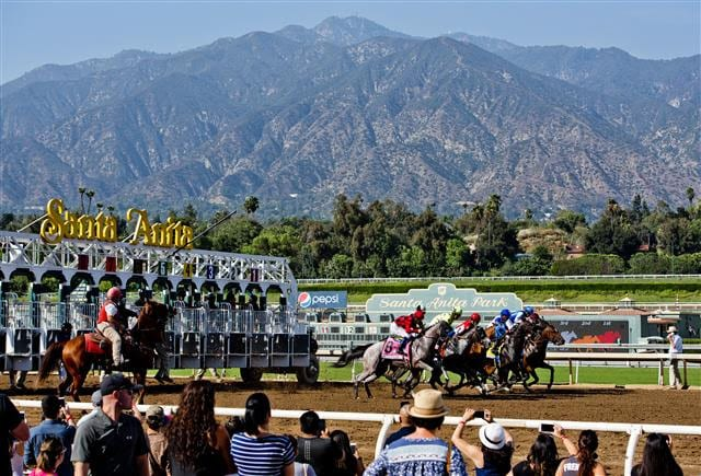 Santa Anita imposing new safety, welfare rules after deaths of 21 horses