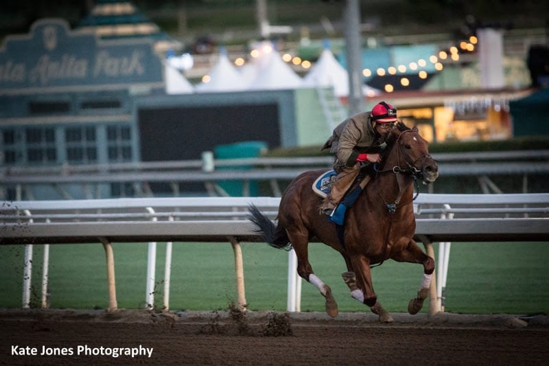 Accelerate 'Maybe Better Than Ever' In Latest Pegasus Work