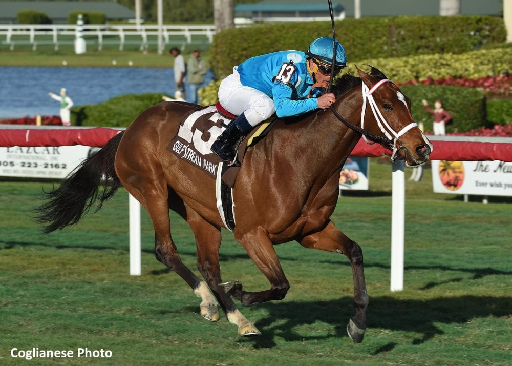 Starship Jubilee Defends Her Title In Sunshine Millions