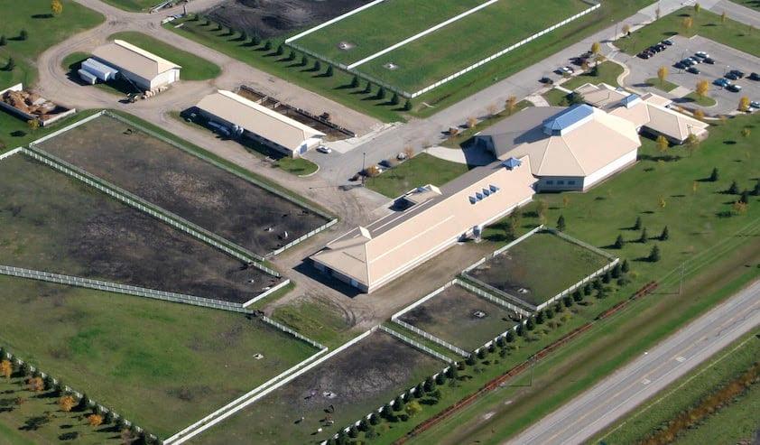 University Of Minnesota Crookston Equine Science Program