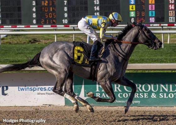 Dream Maker Tops Six Horse Field For Easy Goer Horse