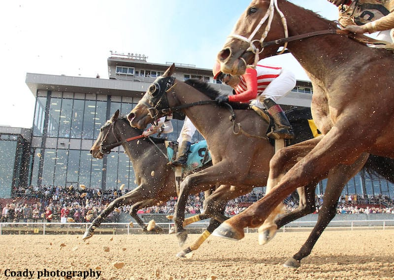 Oaklawn Rebel Could Be Split To Help California Horsemen With Derby Hopefuls Horse