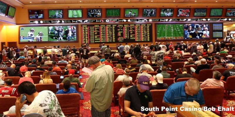 South point casino sports betting spread betting cfd trading difference of cubes