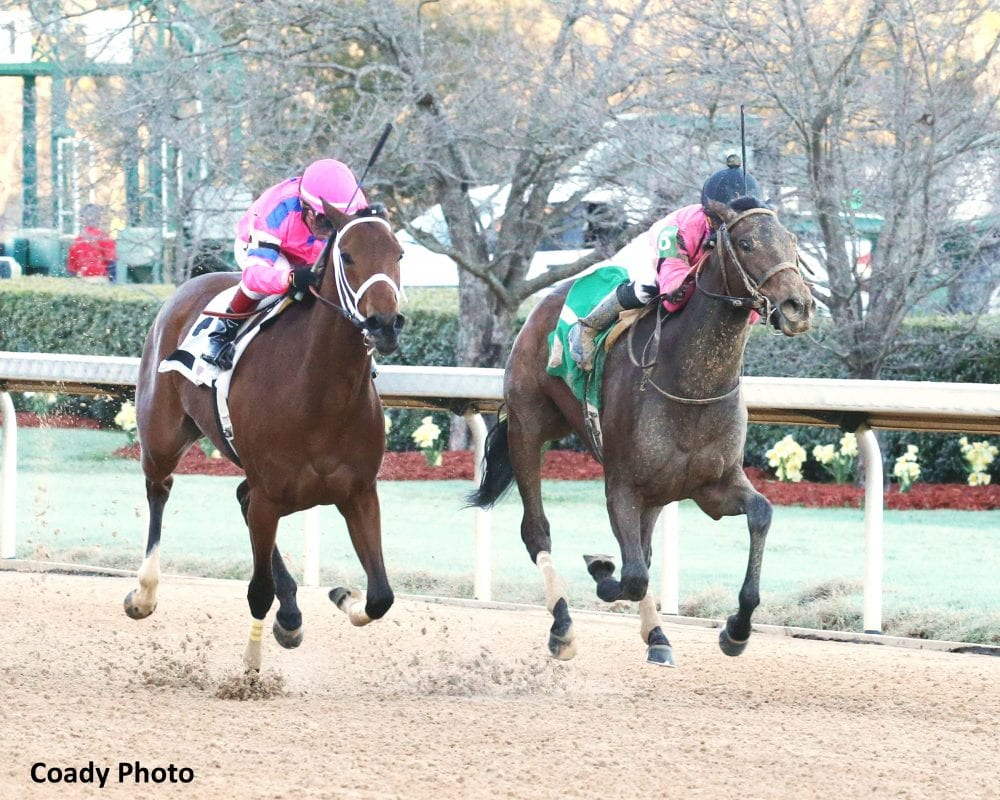 Chocolate Kisses Nets Oaks Berth With Honeybee Score