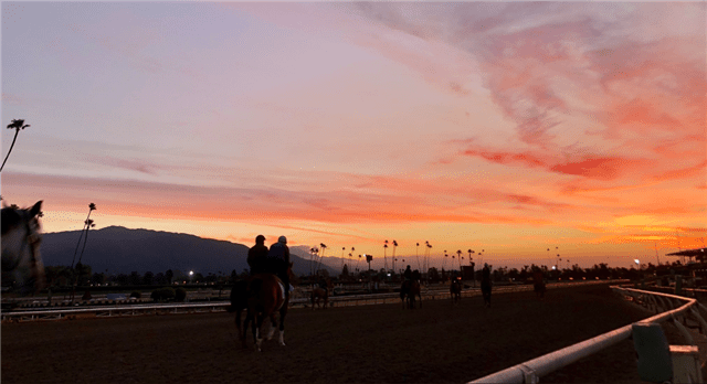 Commentary: Shut Down Of Racing In California Could Lead To