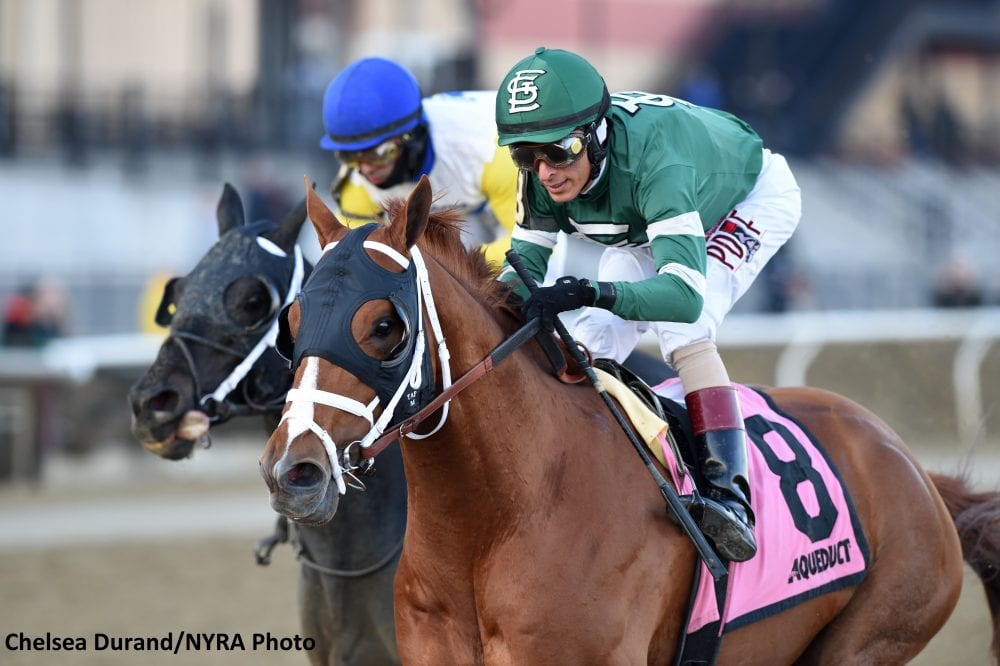 Vino Rosso Makes Successful Return In Stymie Stakes