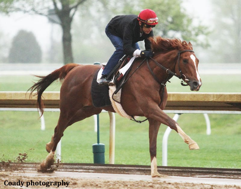 Code Of Honor Has Final Keeneland Breeze Before Shipping