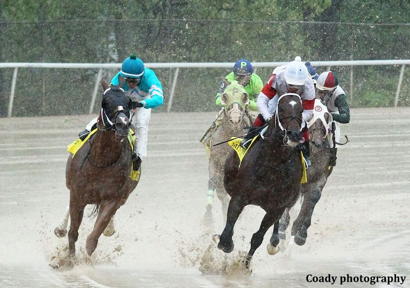 Mitole Outduels Whitmore In Count Fleet Sprint Handicap At