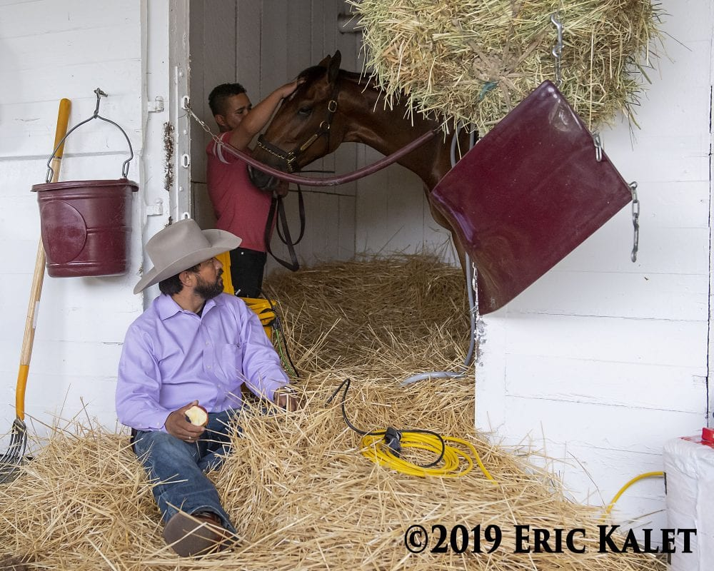 Racing's Red Tape Keeps Equine Therapists From Their Work In