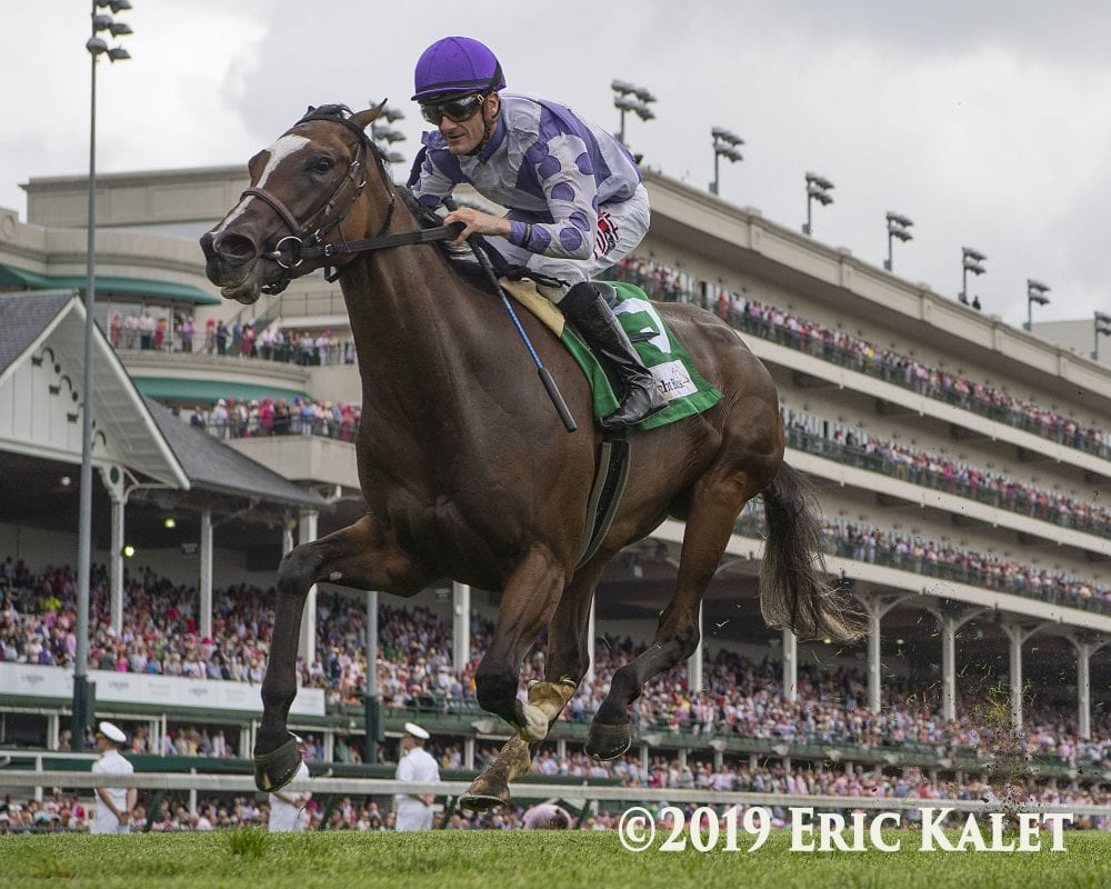 Concrete Rose Upsets Newspaperofrecord In Edgewood Horse