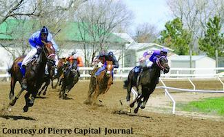 Horse betting in south dakota outrights betting trends