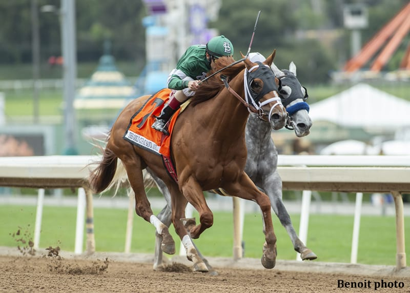 Vino Rosso Ships West To Upset Gift Box In Gold Cup At