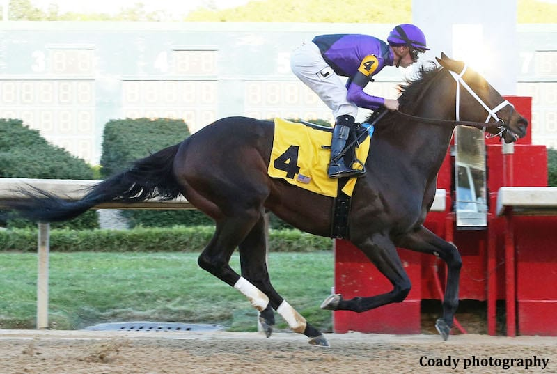 Oaklawn Allowance Winner Warrior S Charge To Be