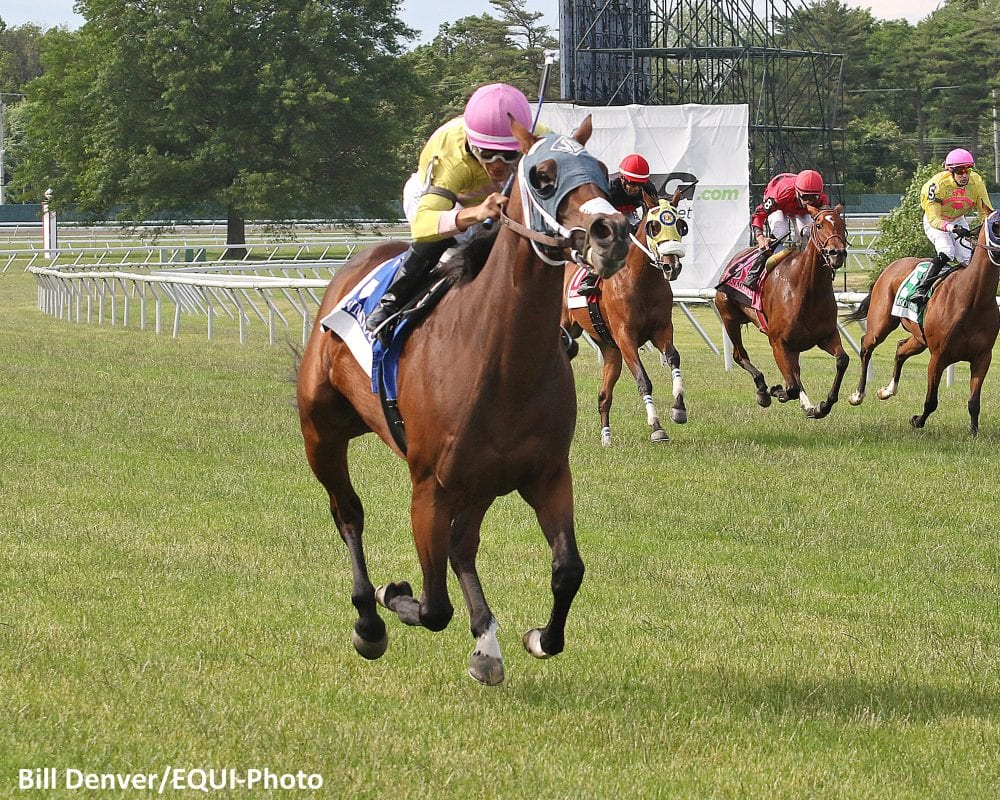 Servis Trained A Bit Of Both Cruises To Honey Bee Win