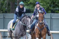 Belmont Stakes picks Archives - Horse Racing News | Paulick