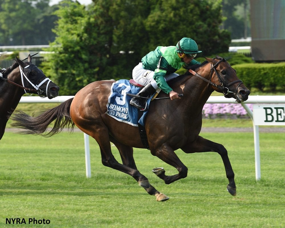 Equibase Analysis: World-Class Belmont Derby Field Provides Great