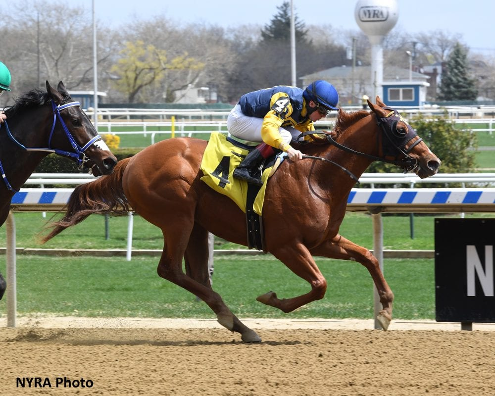 Bloodlines: Maven Likely The First Of Many Stakes Winners For American Pharoah