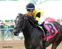 Dale Romans Archives - Horse Racing News | Paulick Report