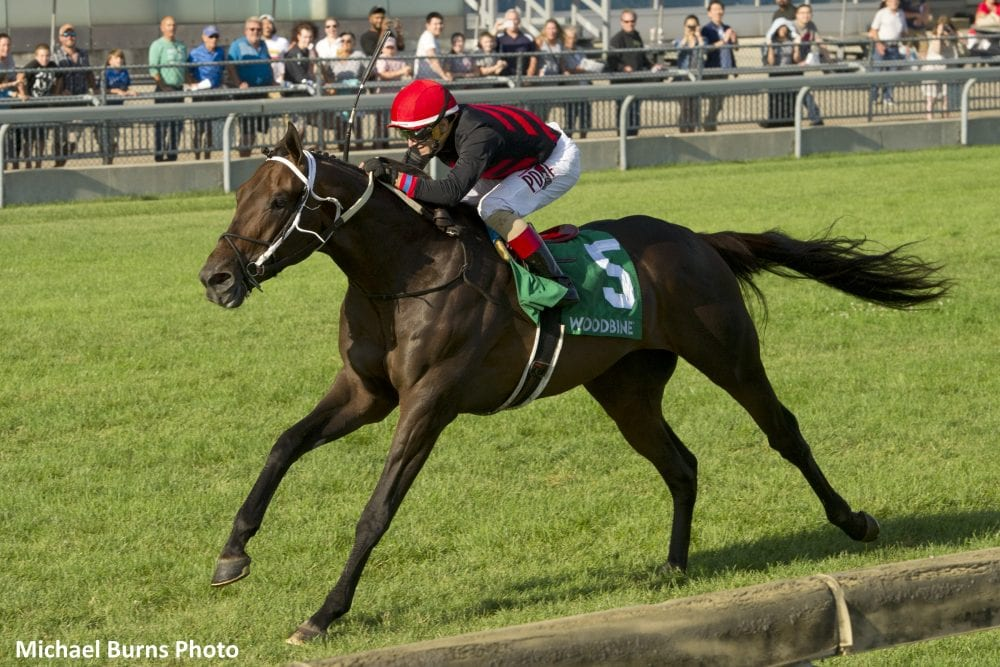 Well-Traveled Tone Broke 'Wants To Go The Distance' Of
