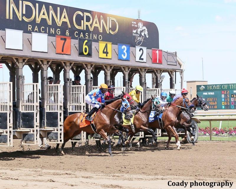 Indiana downs off track betting vanek betting
