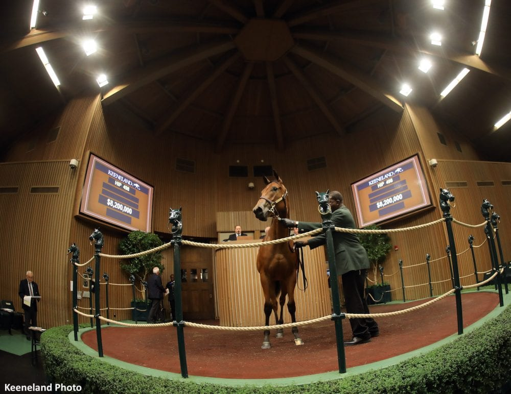 Pope Secures Record-Priced American Pharoah Filly, Half to