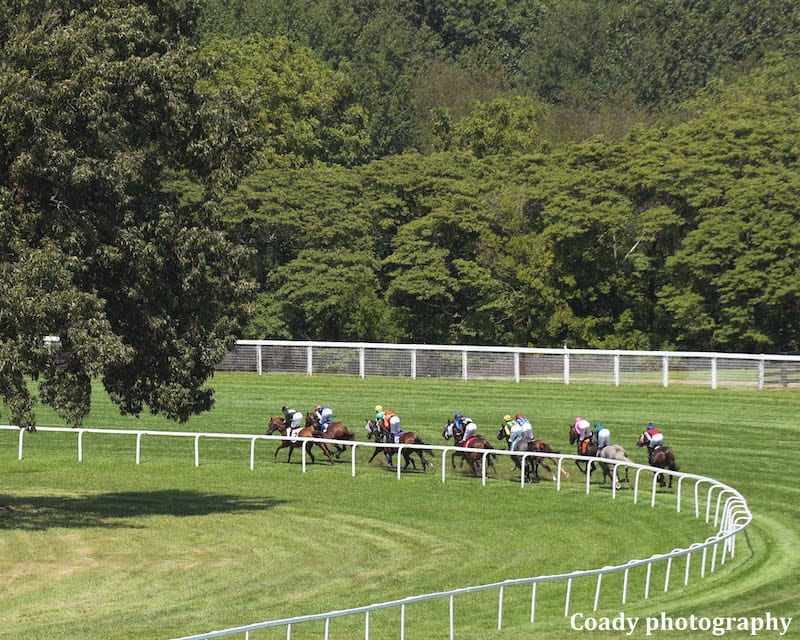 Thoroughbred Idea Foundation The Issue With Race Timing