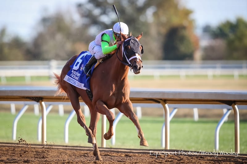 British Idiom Headed To Breeders Cup After Alcibiades