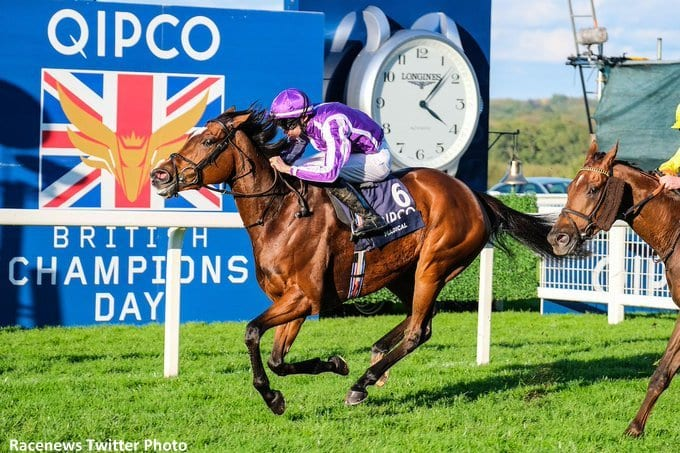 When Is The Breeders Cup In 2020.Breeders Cup Turf Contender Magical Booked To No Nay Never