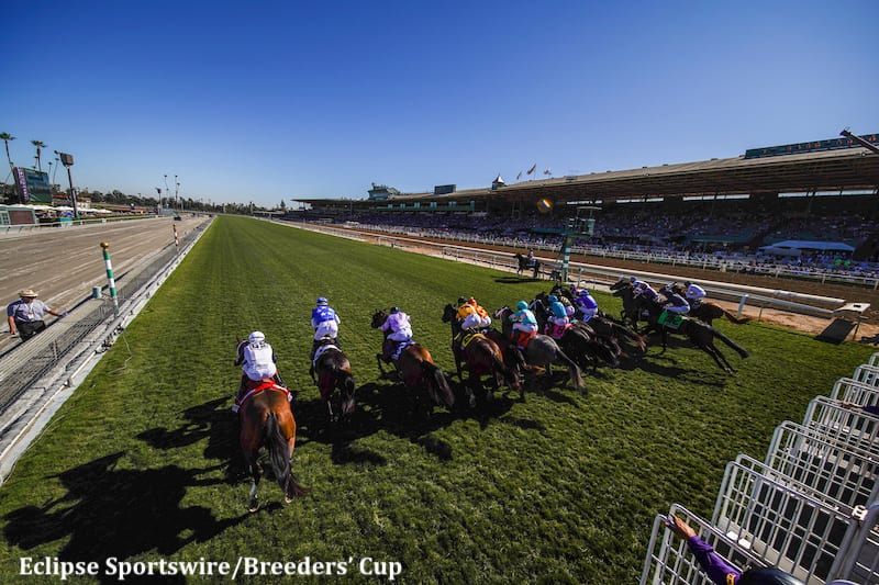 56 517 228 In Wagers Sets Record For Breeders Cup Friday