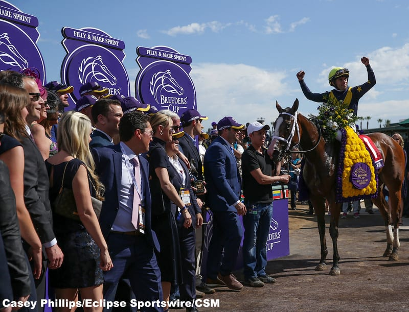 When Is The Breeders Cup In 2020.Covfefe To Aim For Filly Mare Sprint Repeat In 2020