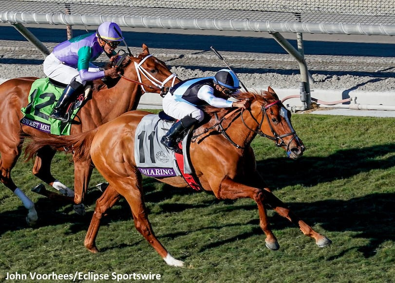 Sharing Delivers On Family Legacy In Breeders Cup