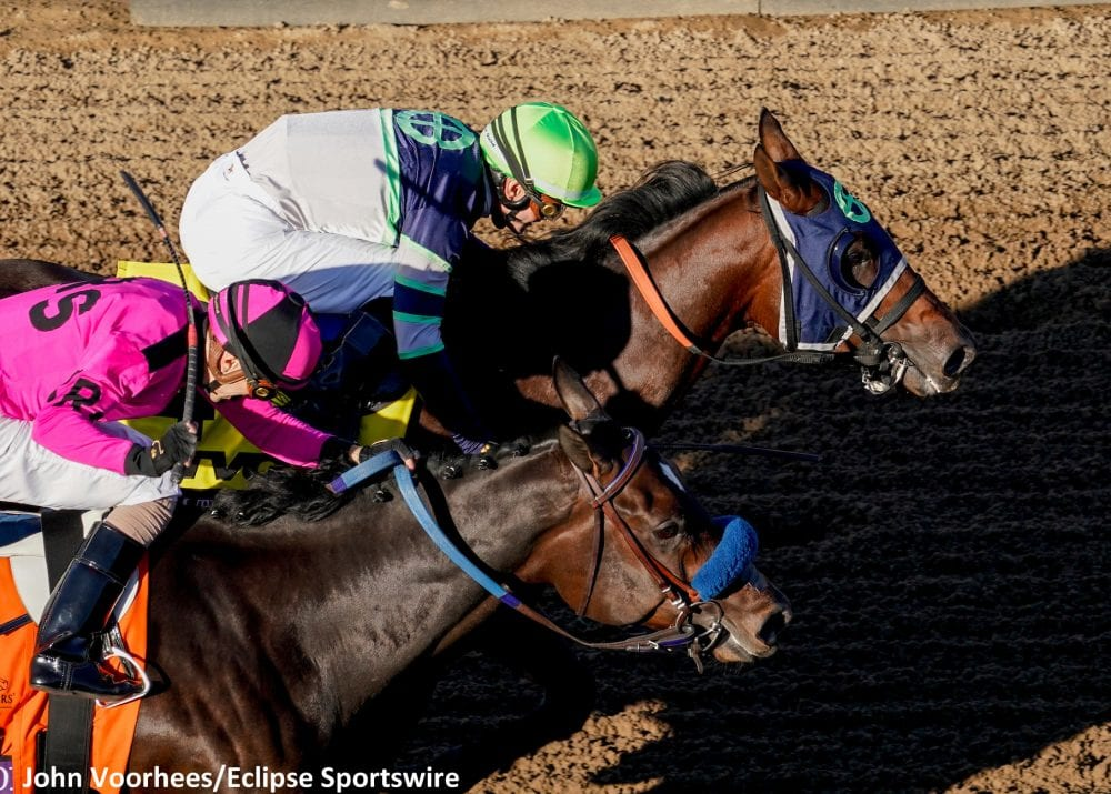 Champion Storm The Court Nadal Face Off In San Vicente At Santa Anita Horse Racing News Paulick Report