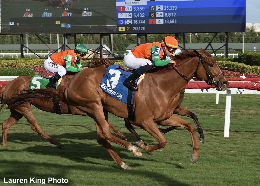 Bloodlines Presented By The Virginia Thoroughbred Association: Racing Class Usually Wins Out In Breeding - Horse Racing News   Paulick Report