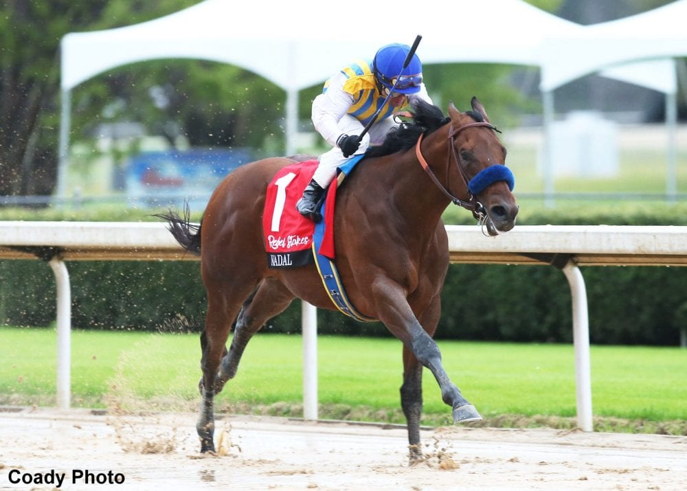 Nadal Serves Up Wire To Wire Victory In The Rebel Horse Racing News Paulick Report
