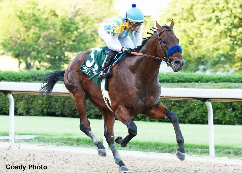 Baffert Plans For Undefeated Nadal Charlatan To Clash In June 20 Belmont Stakes Horse Racing News Paulick Report