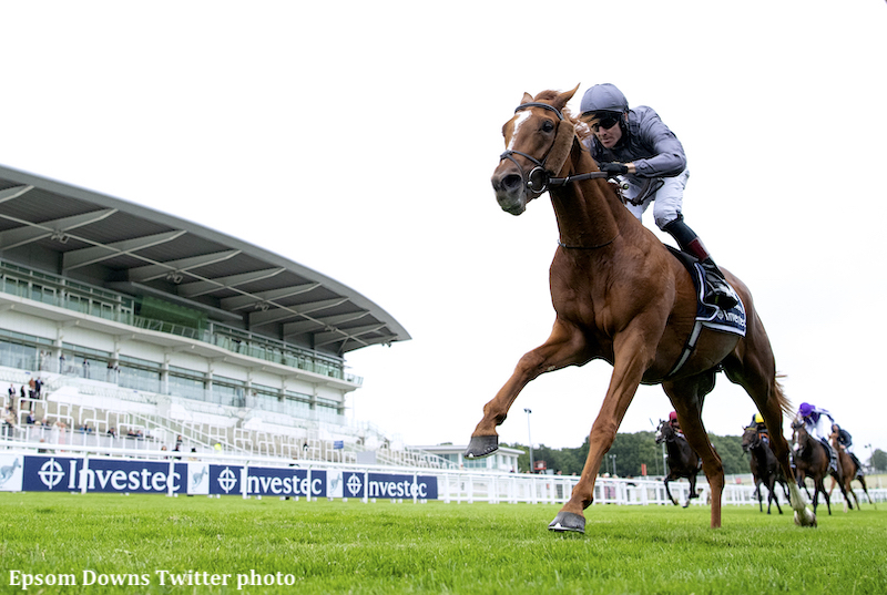 Serpentine goes from maiden to Epsom Derby victor in a week