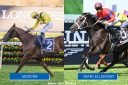 Australia: Addeybb, Verry Elleegant Rivalry Heats Up On Day Two Of The Championships At Randwick