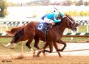 Maryland Million: Double Crown Returns In Sprint, So Street Chasing Second Stakes Victory In Turf Sprint